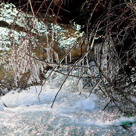 by Allyson Kusko - Nature Up Close Water ( nature, ice, creek, waterdrops, spring )