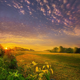 Just Another Post by Phil Koch - Landscapes Prairies, Meadows & Fields ( vertical, arts, fine art, travel, yellow, love, sky, nature, weather, light, trending, colors, twilight, art, mood, journey, horizon, rural, portrait, country, dawn, environment, season, serene, popular, outdoors, lines, natural, hope, inspirational, canon, wisconsin, ray, joy, landscape, sun, photography, life, emotions, dramatic, horizons, inspired, clouds, office, heaven, camera, beautiful, scenic, living, morning, field, unity, blue, sunset, peace, meadow, summer, beam, sunrise, earth )