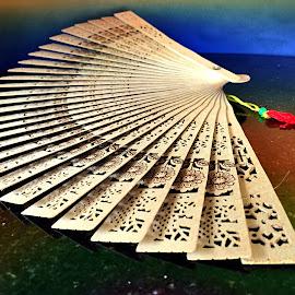 Beautiful Fan by Janette Ho - Artistic Objects Still Life