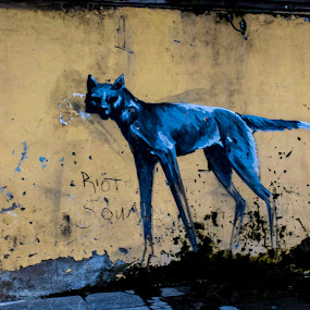Black Dog by Jean Plessis - City,  Street & Park  Street Scenes ( grafitti, urban, johannesburg, art, street, central )
