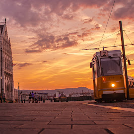 tram in budapest during sunset by Mo Kazemi - City,  Street & Park  Street Scenes ( budapest hungary, golden hour, sunset, magic hour, budapest, tram, europe, street photography, transportation, hungary )