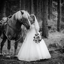 Horse wedding by Michal Schwarz - Wedding Bride ( black and white, dress, wedding, horse, forest, beauty, bride, flower, just married )