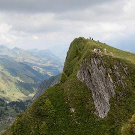 Rochers de Naye, Switzerland by Sayan Nandi - Landscapes Mountains & Hills