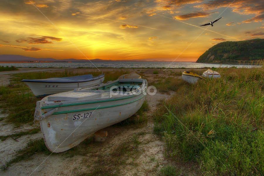 SS 127 by Boris Frković - Transportation Boats ( losinj, dawn, sunrise, boat, landscape, susak, island )