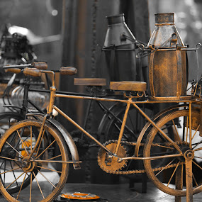 Bicycle ! by Ashish Jain - Artistic Objects Other Objects