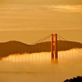 Drifting Winters Fog by Jeff Steiner - Buildings & Architecture Bridges & Suspended Structures ( winter, golden gate bridge, fog, marin headlands )