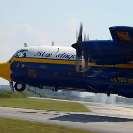 Fat Albert by Bill Telkamp - Transportation Airplanes ( c130, airplanes, airplane, blue angels, airshow )