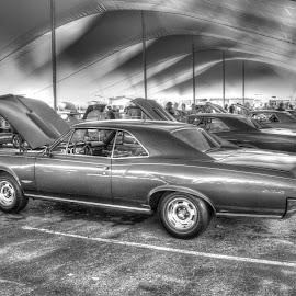 1966 Pontiac GTO  by Norman Stephens - Transportation Automobiles ( gtoaa convention in columbus indiana 2015 1966 pontiac gto,  )