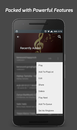 Pi Music Player screenshot 6