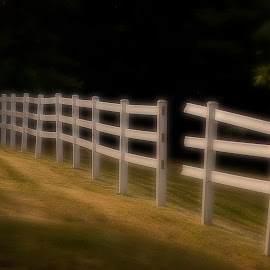 Broken Fence by Ron Chan - Artistic Objects Still Life ( broken, fence,  )