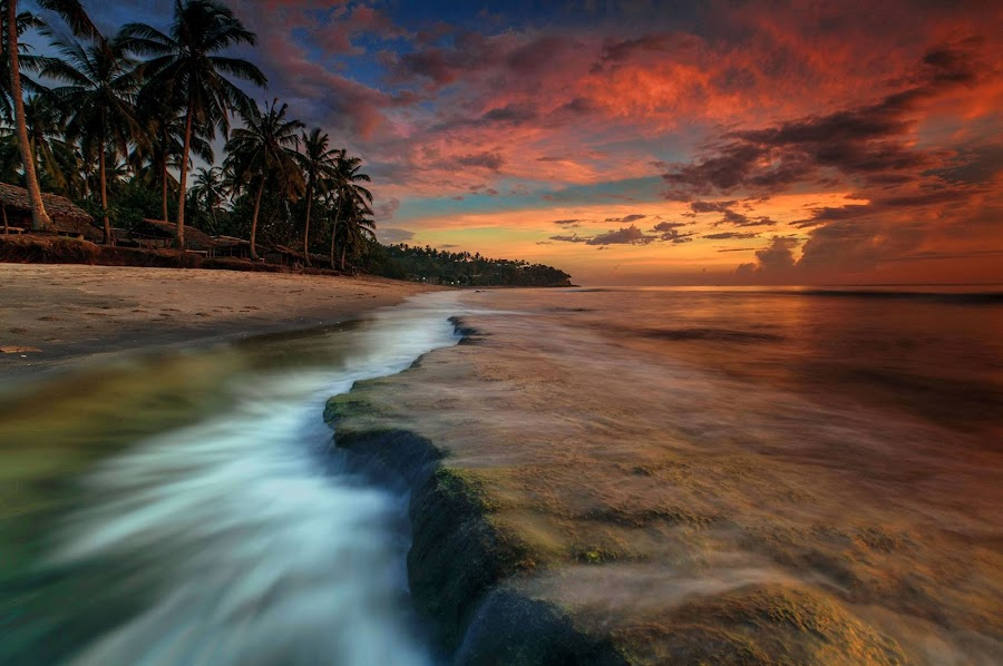 by Made Thee - Landscapes Beaches