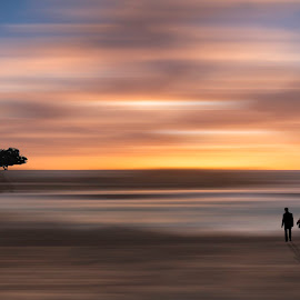 A walk to sunset by Amir Ehrlich - Digital Art People ( shades, tree, colors, sunset, fine art, couple, shade, walk, people )