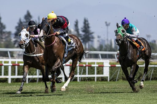 Noble Pensamiento (Passion for Gold) ganó Handicap (1300m-Pasto-CHS).