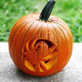 Spider Jack-o-Lantern by Amanda  Castleman  - Public Holidays Halloween ( scary, carved, pumpkin, vegetables, spider, halloween )