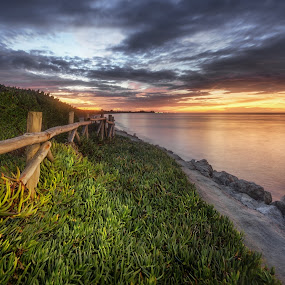 Last Light by Giorgos Makropoulos - Landscapes Beaches ( clouds, colour, orange, wood, sunset, greece, travel, kos island, beach, sun )