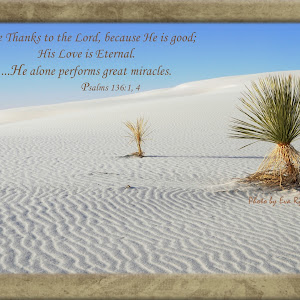 5x7 Desert.jpg