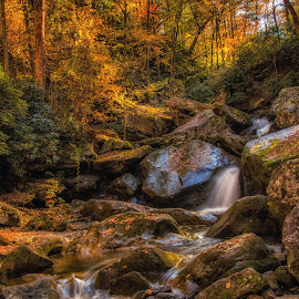 Wolf Creek Cascades by Sandi Phillips Miller - Landscapes Waterscapes ( water, 2017, new river gorge, autumn, cascade, fall, waterfall, trees, fayette station road, wolf creek )