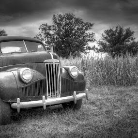 Runs like a champ by Vicki Overman - Transportation Automobiles ( black and white truck, truck, studebaker automobile, farm truck, old truck )