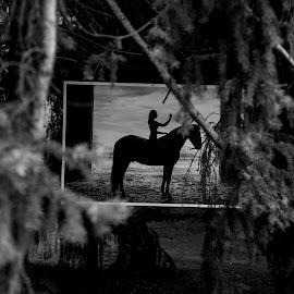 by Dušan Gajšek - Black & White Abstract