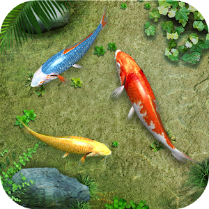 App water koi fish pond lwp apk for kindle fire download for Koi pond app