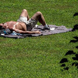 Getting Some Sun by Thomas Shaw - People Portraits of Men ( grass, goatee, shirtless, leaves, raleigh, sunning, north carolina, shourts, blanket, tree, tanning, legs, man )