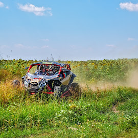 Buggy in action by Opreanu Roberto Sorin - Sports & Fitness Motorsports ( person, automobile, dune, driving, race, danger, drive, action, dutch, power, dirt, motion, hill, rali, monster, fun, off-road, baja, jump, daf, rally, raly, buggy, auto, view, big, fast, car, crunch, wheel, truck, crush, vehicle, land, way, qat, adventure, dirty, path, motorsport, hard, bulgaria, extreme, editorial, speed, offroad, track, play, sport, atv, front, smash, ruse, up, challenge, red, blue, unkind, off, competition )