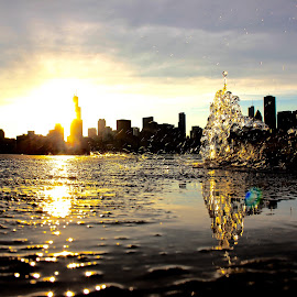chicago skyline by Shivam Chhabra - City,  Street & Park  Skylines ( water drops, skyline, nature, sunset, chicago, landscape,  )