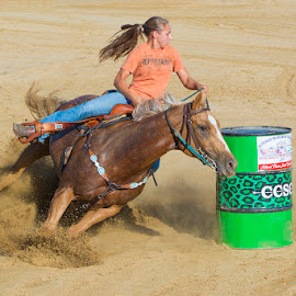 Barrel Racer by Joe Saladino - Sports & Fitness Other Sports ( barrel_race, horse, race, competition )
