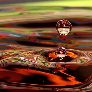 drops April 6a 2012f1401.jpg