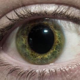 Shifty Green by Robyn Woodley - People Body Parts ( eyelashes, green, green eyes, eyes, eye )