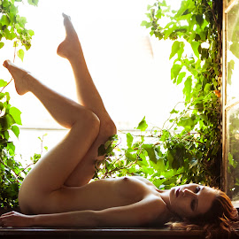 Aga in museum window by Marcin Śmieszek - Nudes & Boudoir Artistic Nude ( girl, nude, window, female, woman, naked, ivy,  )