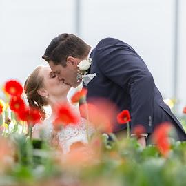 Flower house by Lodewyk W Goosen (LWG Photo) - Wedding Bride & Groom ( wedding photography, wedding photographers, wedding photography bride, weddings, wedding, bride and groom, wedding photographer, groom, bride groom )