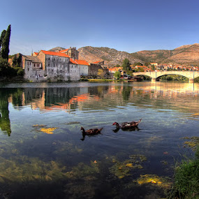 ducks by Branislav Rupar - City,  Street & Park  Vistas ( olympus river trebinje bridge )