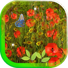 Poppy Magic Flowers LWP