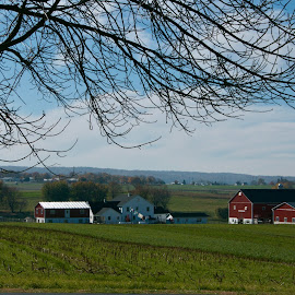 Lancaster Landscape by Lynn Chendorain - Landscapes Prairies, Meadows & Fields ( countryside, amish, houses, landscape, rural, country, setting, lancaster pa, amish country, crops, barns, scenery, homes, fields )