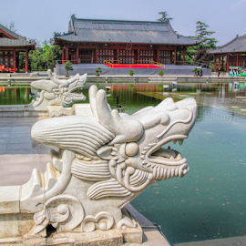 Dragons by Vibeke Friis - Buildings & Architecture Statues & Monuments ( dragons, chinese,  )
