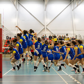 Smash by Flemming Nielsen - Sports & Fitness Other Sports ( volleyball, smash )