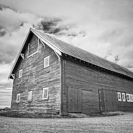 Skagit Valley  by Todd Reynolds - Black & White Buildings & Architecture