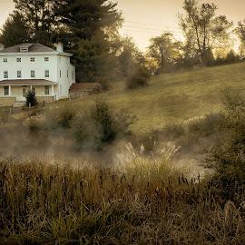 Keurner Farm - Wyeth-esque by Jim Salvas - Buildings & Architecture Homes ( wyeth, reeds, field, farm, mist, famr )
