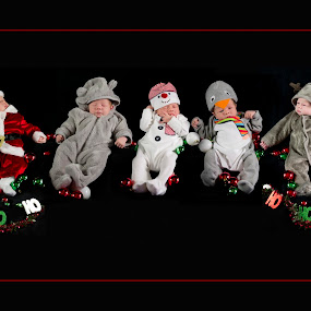 Five times more fun by Julie Wetherell - Public Holidays Christmas ( babies, reindeer, santa, penguin, holidays, snowman, fun, baby, teddybear. )