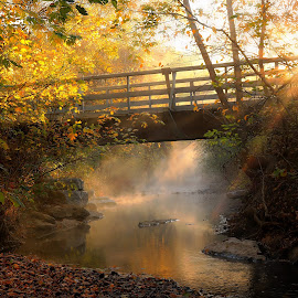 A BRIDGE TO THE LIGHT by Dana Johnson - Buildings & Architecture Bridges & Suspended Structures ( fog, waterscape, fall, creek, forest, bridge, morning, landscape )
