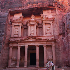 The Treasury by Gabriel Gutierrez - Buildings & Architecture Public & Historical ( desert, pink city, travel, treasury, petra,  )