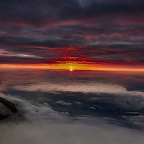 ---------- by Dimitrios Lamprou - Landscapes Cloud Formations ( clouds, sky, tree, fog, sunrise )