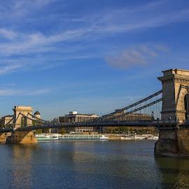 Budapest by Viorel Stanciu - Buildings & Architecture Bridges & Suspended Structures ( hungary, budapest, bridge, bridges, danube )
