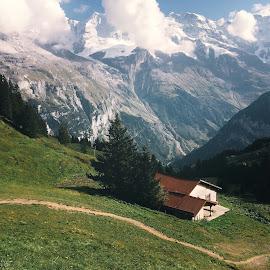 Hiking at Bernese Oberland by Franz Engels - Instagram & Mobile iPhone ( mountains, switzerland, swiss alps, landscape, bernese oberland, hiking, jungfrau, vsco )