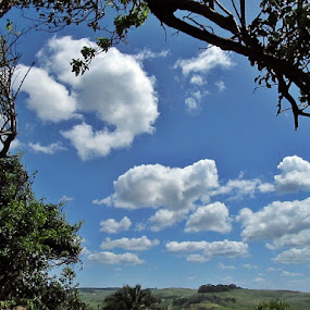 by Nico Ebersohn - Landscapes Cloud Formations ( sky, clouds, skyline, trees, landscape,  )