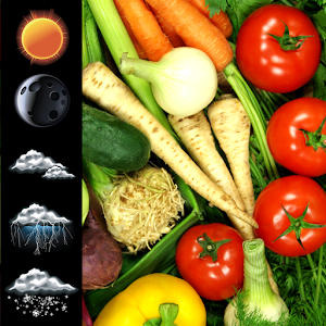 Fresh Vegetables Widget Clock APK