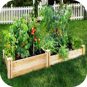 DIY vegetable garden for PC-Windows 7,8,10 and Mac