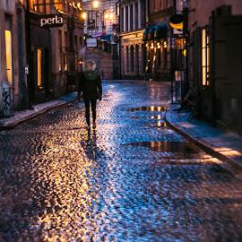 Old city in Stockholm 1 by Staffan Håkansson - City,  Street & Park  Street Scenes ( sweden, stockholm, night, rapsbollen, light, rain, city at night, street at night, park at night, nightlife, night life, nighttime in the city )