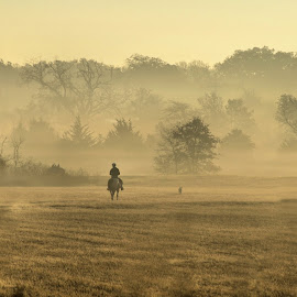 Foggy Sunrise Ride by Trudy Mader - Landscapes Weather